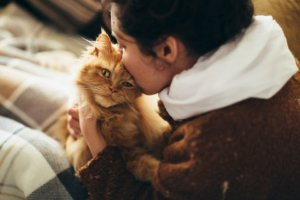 Vacation and Separation Anxiety in Cats