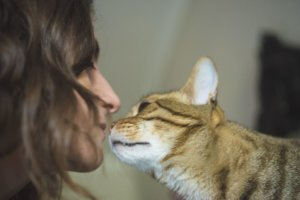 Why Does My Cat Bite My Chin?