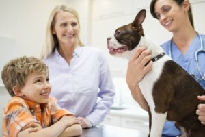 10 Zoonotic Diseases You Can Get From Your Pet